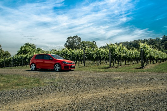 VW GOLF R – VICTORIA VINEYARDS